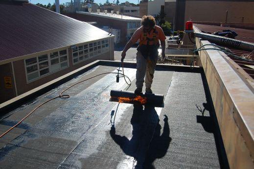 flat roof - tar paper
